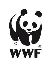 WWF RIMINI ESCAPE='HTML'